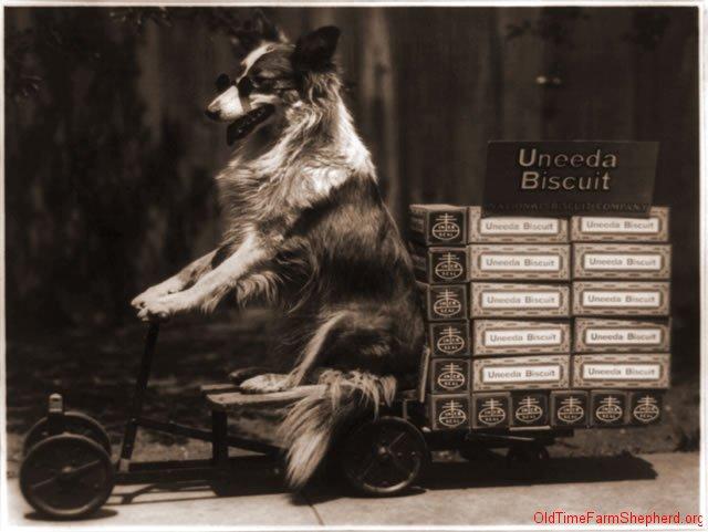 Uneeda biscuit promotion - 1916