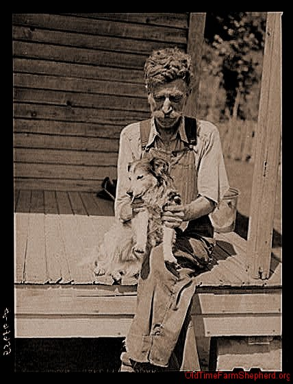 Sharecropper and his collie pup - 1940