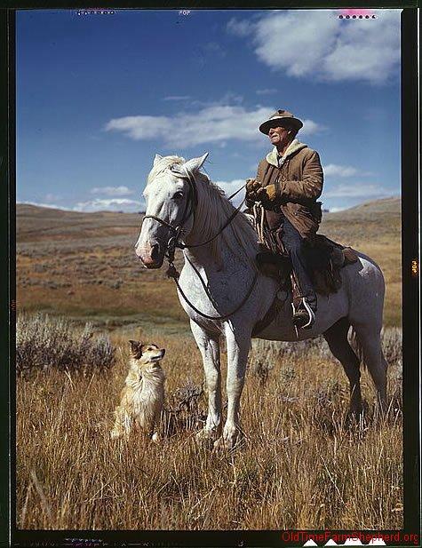 Shepherd and his dog - 1944