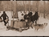 Collie and sugaring - 1940