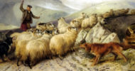 Collies herding sheep in Ansdell painting