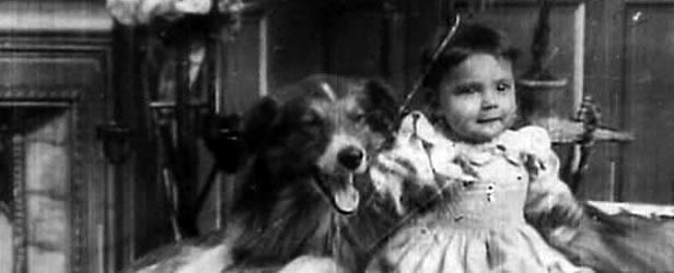 Rover, silent film star
